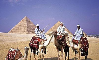 购物 新闻 灵感埃及人使用互联网的三件事