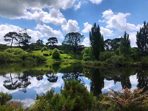 新西兰所有住宅的平均价值为681545美元