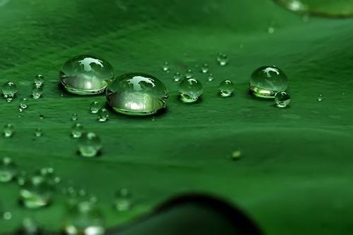 压力的变化比温度更强烈地影响液体转化为气体的速度