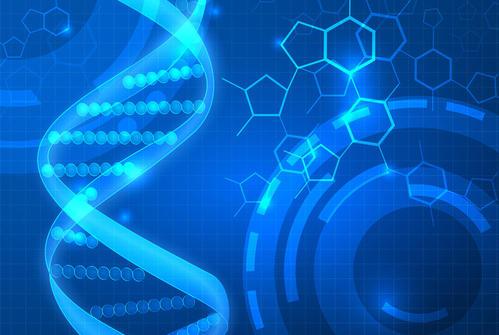 Startup想要对您的基因组进行排序