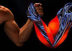 人造肌肉可以实现强大的拉力