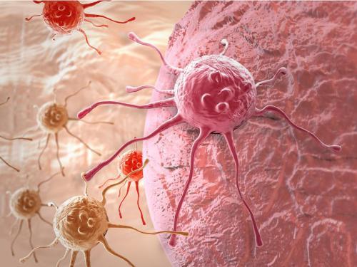 新的替代细胞生长途径可以导致更好的治疗转移性癌症