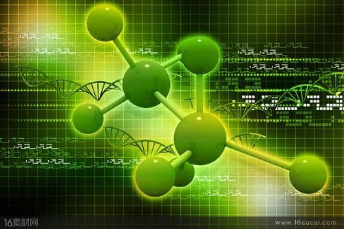 从118年的玉米实验中鉴定出产量提高的绿色基因