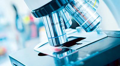 尽管需求不断增加 但在过去几十年中 新开发的药物数量持续下降