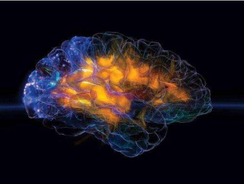 TBI后给予的新疗法可预防脑损伤