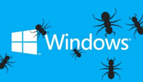 Windows 10更新继续让用户头痛