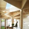 树状的柱子支撑着AtelierVensVanbelle的根特房屋扩建的屋顶