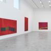 达米安赫斯特在伦敦南部画廊的首张官方照片发布