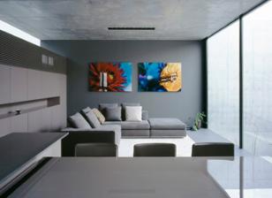 ApolloArchitects在原始混凝土Grigio房屋中为艺术品和汽车创造空间