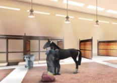 宠物在Gensler设计的肯尼迪动物机场航站楼接受水疗护理