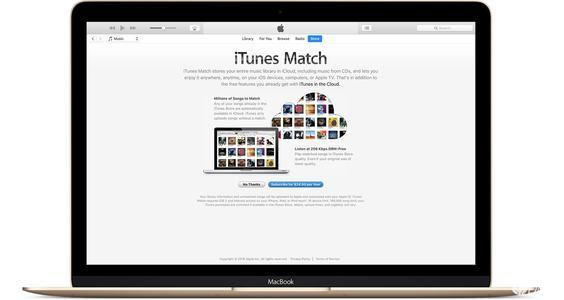 其他相关主题包括HomePod隐私和安全性Apple的Podcasts应用