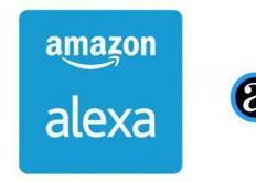 谷歌助手和亚马逊Alexa可能会来到XboxOne