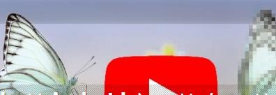 YouTube的Android应用将在即将到来的更新中获得默认的视频质量设置
