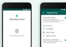 访问所有Android的文件系统-包括难以捉摸的数据文件夹