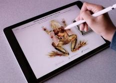 Froggipedia是一个交互式应用程序使学习变得轻松有趣