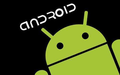 据报道某些Android设备无法解析本地域上的主机名