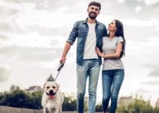 生活小知识:日行万步真能带来健康益处吗 三种走路姿势更伤害膝关节