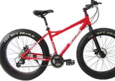 EMovement在其商店里准备了250辆Thor自行车