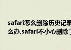 safari怎么删除历史记录(safari不小心删除了历史记录怎么办,safari不小心删除了历史记录该怎么办)